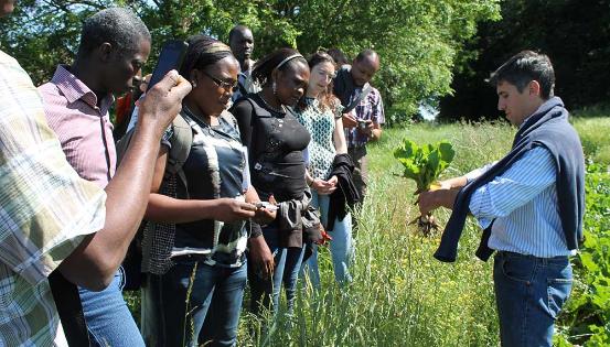 Agriculteurs du Nord et du Sud, unis à travers l'agroécologie. Ici, transmission réciproque d'expertises à Corroy-le-Grand, en 2014, à l'initiative de l'ONG ADG Gembloux. © Aide au développement Gembloux - Culture des possibles
