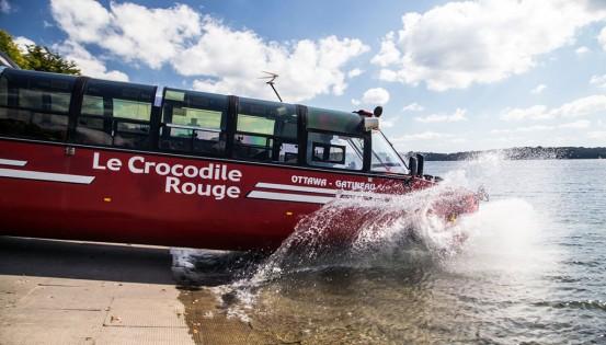 © JF Baelden Une quête au trésor originale sur Le Crocodile rouge